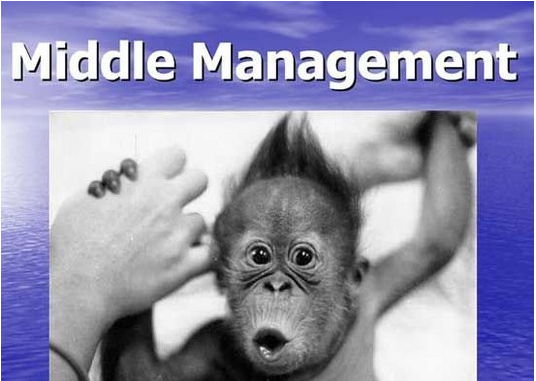 Middle Management is Killing your Sales