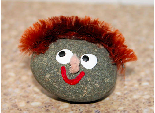 image of pet rock