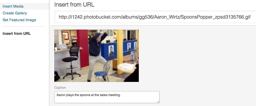 Insert from URL Option in WordPress