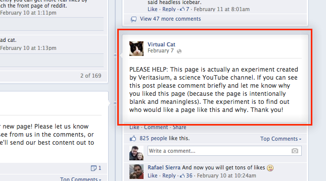virtual cat facebook page