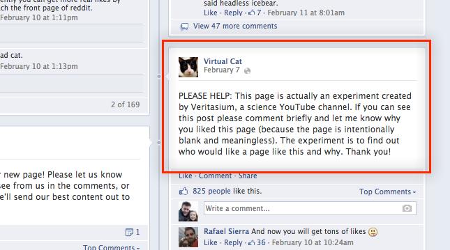 virtual cat facebook page