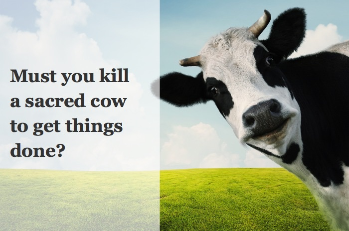 Can you Kill a Sacred Cow? The Best of the Best.