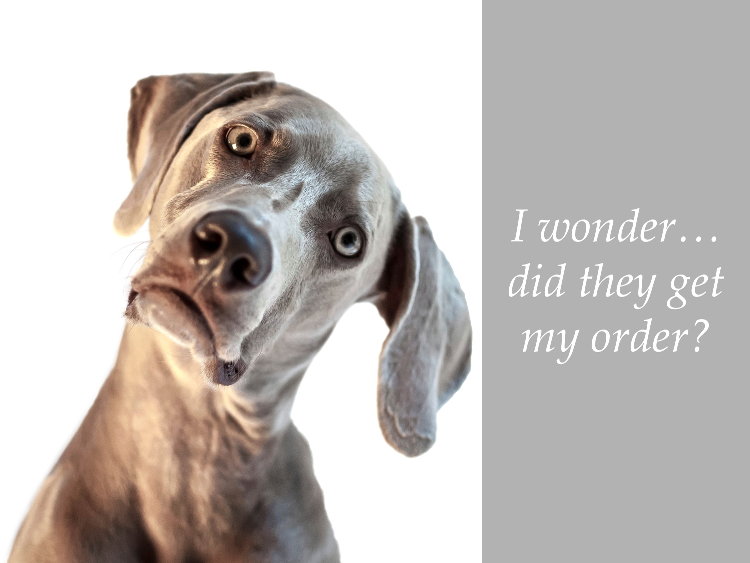 automotive auto-response greyhound dog