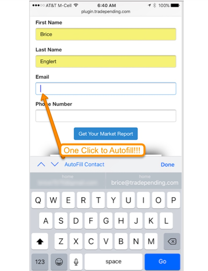 auto mobile form fill conversion on iOS