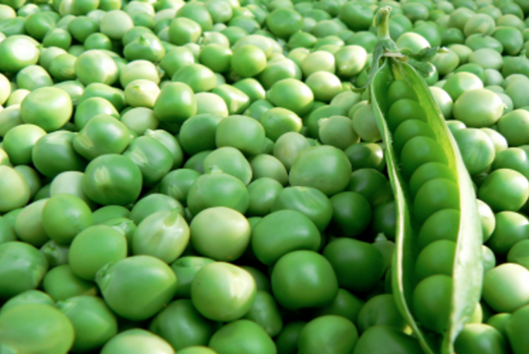 Did You Know You Can Drown In Green Peas?